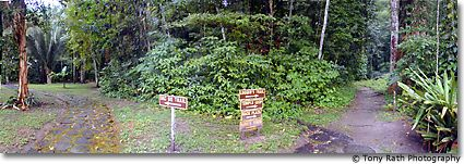 Trail signs at Chan Chich Mayan Site