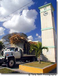 Sugar Cane Trucks at the Clock Tower Intersection